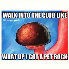 It's from the song thrift shop but a spongebob version Geology Humor, Pet Rocks, Laughing So Hard, Make Me Smile, I Laughed, Laughter, Haha, Funny Pictures, Funny Pics