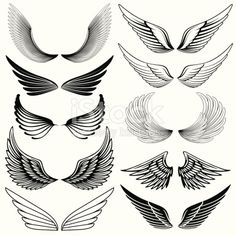 Set of stylized wings.Hi res jpeg included.More works like this linked below. Wing Tattoo Designs, Owl Tattoo Design, Tattoo Sleeve Designs, Tatuagem Conor Mcgregor, Eagle Wing Tattoos, Alas Tattoo, Chicano Lettering, Neck Tattoo For Guys, Animal Body Parts
