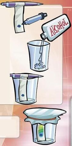 Chromatography Experiments For Kids | Science Experiments For Kids  -Repinned by Totetude.com
