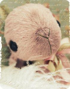 Ein kleines Shortie-Pooopie möcht Euch alles Liebe zum Valentinstag wünschen. Sie ist extra durch die Botanik gehoppst und hat ein paar Pflö...
