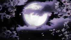 Aesthetic Gif, Aesthetic Backgrounds, Aesthetic Wallpapers, Anime Gifs, Anime Art, Luna Anime, Cute Gifs, Google Backgrounds, Banner Gif
