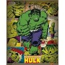 GB Eye Posters Marvel Comics Incredible Hulk Retro - 16 x 20 This Mini Poster measures 16 x 20 Inches and features Hulk from the series Hulk. (Barcode EAN=5050574504294) http://www.MightGet.com/january-2017-11/gb-eye-posters-marvel-comics-incredible-hulk-retro--16-x-20.asp