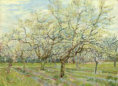Dit is iets heel ander dan al die landschappen van van Gogh met graan. Je ziet een prachtig veld met allemaal bomen in de bloesem. 1 van de mooiste tijden van het jaar aangezien het zo mooi plaatje geeft. Niks te maken met savanne en geel, maar wel weer met de toon van de kleuren die ik mooi vind. Namelijk die zachte kleuren, erg rustgevend. In een gele/oranje tint zou dit denk ik best mooi kunnen zijn voor een horizon. Bloeiende boomgaard.