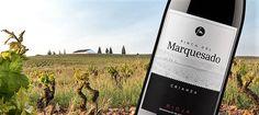 """Los aficionados al mundo del vino, seguimos desde hace meses los movimientos que se están produciendo en el seno de la DOc. Rioja acerca de los cuales ya publicamos unartículo hace varios meses.Al parecer, el Consejo Regulador baraja aprobar a lo largo de 2017 una nueva categoría denominada """"Viñedo Singular de Rioja"""" que permita calmar"""