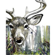 Deer Print 8X10 original drawing by northtrain on Etsy, $15.00