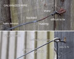 HOW TO CREATE QUALITY WIRE SUPPORTS FOR WALLS AND FENCES;  Wire vs Nylon trellis support.