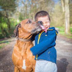 . Pet Dogs, Pets, Rhodesian Ridgeback, Beautiful Dogs, Doge, Dog Stuff, Kisses, Little Ones, Best Friends