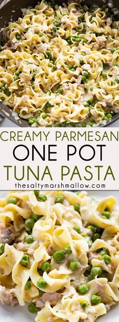 Creamy Parmesan Tuna Pasta is the easiest one pot tuna and noodles recipe! Tender pasta comes together with flavorful tuna, garlic, and parmesan cream sauce for a flavorful dinner ready in 20 minutes! Pasta Sauce Recipes, Noodle Recipes, Fish Recipes, Healthy Recipes, Recipes For Tuna, Healthy Food, Recipe Pasta, Cream Recipes, Healthy Chicken