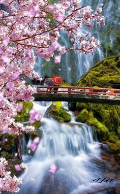 Cascada Kegon, en la Perfecture de Tochigi, parque Nacional de Nikko en la ciudad de Nikko, la cascada con 97 metros de altura es una de las tres cascadas más bonitas de Japón