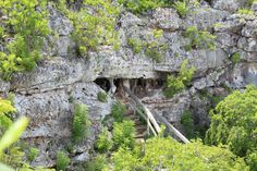 Peter's Cave Cayman Brac, Cayman Islands I've been in there. Grand Cayman Island, Cayman Islands, Traveling Tips, Hawaiian Islands, Photo Essay, Island Life, Dream Vacations, Thought Provoking, Road Trips