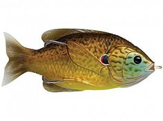 Check out the BamaFrogs Spring Topwater Contest. Purchasing any LiveTarget Sunfish will enter you in the contest. Topwater Lures, Late Evening, Open Water, Dark Colors, Animals, Fishing, Copper, Spring, Products