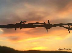Photo taken by Jolynn Natman. Sunset and Barbed Wire at Kellogg Beach. Fort Dick, California/Crescent City, California.