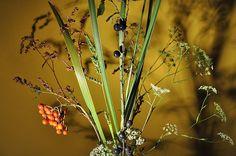 Kytice z divokých květů