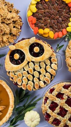 Make pie decorating a real hoot by crafting your dough into designs like leaves, a turkey, and yes — even an owl.