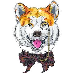 vector de la historieta divertida del perro del inconformista Akita Inu photo