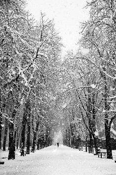 Vitoria nevada en 2013 | Vitoria-Gasteiz, Spain
