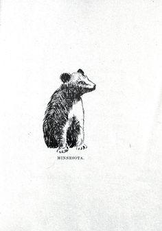 Animal - Bear - Baby bear drawing 012