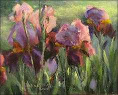 Irises and Light by Dianne Mize