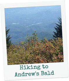 Andrew's Bald is a great family hike-read my tips here!