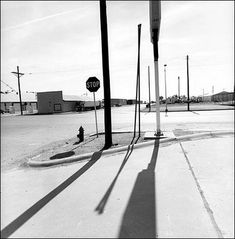 Lee Friedlander, New Mexico 2001