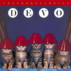 We are not cats, we are Devo!  -classic album covers replaced with kitties-