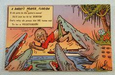 Black Americana Florida Postcard Alligator