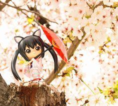 Azunyan under the sakura