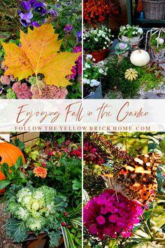 Follow The Yellow Brick Home - Enjoying Fall in the Garden – Follow The Yellow Brick Home