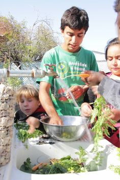 After School Gardeners washing harvest for a salad snack!