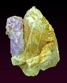 Sodalite with Fluororichterite /  Mineral Friends <3