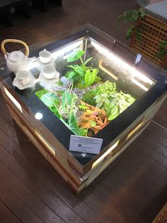 Green terrarium table made from pallet