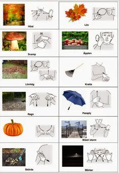 hösten-arkiv - Tecken som stöd - Toppbloggare på Womsa Learn Swedish, Swedish Language, Fall Preschool, Mini Craft, School Hacks, Teaching Materials, Baby Time, Sign Language, Signs