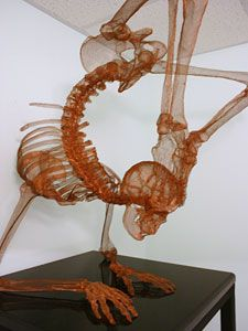 Copper Wire Art | Copper wire anatomical sculpture.