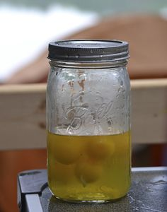 Camping Tip: Eggs I read this tip on a camping site and I tell you, it was the best. I emptied a dozen eggs into a mason jar for easy travel.  They fit perfect in the cooler without the worry of breaking them. You just pour them out as you need them. It was a great tip so I figured I'd pass it along.