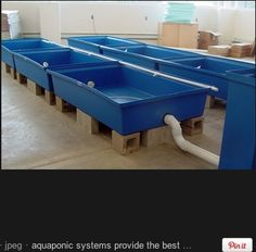 aquaponics set-up