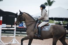 I also worked with champagne at It cloudier thought but today she doing better - Allie Cute Horses, Pretty Horses, Horse Love, Horse Girl, Beautiful Horses, Equestrian Outfits, Equestrian Style, English Riding, Horse Photos