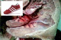 Proof of time travel? A old mummy was found wearing 'Adidas shoes' A mummy was found 'wearing Adidas' and people think it's proof of time travel Adidas Boots, Adidas Shoes Women, Adidas Sneakers, Grey Sneakers, Women Nike, Aliens And Ufos, Ancient Aliens, Ancient History, Ancient Mysteries
