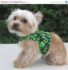 ON SALE Dog Harness St Patricks Day Shamrock by CamargoCreations, $15.00
