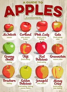 Healthy Food Friday: Guide To Eating And Baking With Apples (Cortland Apple Recipes) Fruit Recipes, Apple Recipes, Fall Recipes, Healthy Recipes, Rice Recipes, Thanksgiving Recipes, Lexi's Clean Kitchen, Kitchen Tips, Cooking Tips