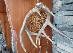 Hand Made Antler Dream Catcher by HiddenHollowCrafts on Etsy, $150.00