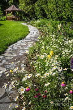 Wildflower Garden And Path To Gazebo Photograph  -