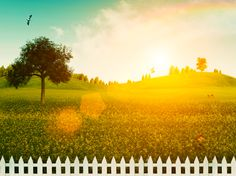 """One of the most interesting items given the """"short end of the stick"""" in Silicon Valley #realestate, are fences! This is understandable in the sense that they are not shining with """"wow factor"""" like the kitchen, or home theater or even a """"man cave..."""" Read more and SUBSCRIBE! http://AccessRealEstateBlog.com """"Did You See the Fence?"""" Weekly Posts brought to you by William Curry at http://AccessRealEstateSanCarlos.com"""