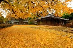 Jeonju Hanok Village (Jeollabuk-do Jeonju-si), South Korea (been)