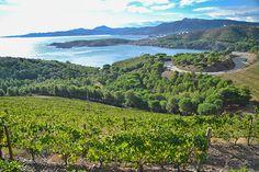 Empordà i Vi Tourism, Spanish, Landscapes, Places To Visit, Relax, River, Nature, Outdoor, Sun