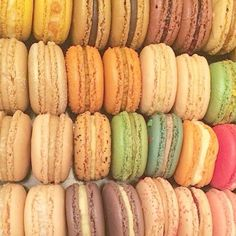 A Collection Of Macarons