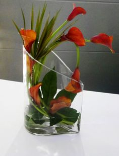 A very modern arrangement of 'Mango' Calla Lilies arranged into a unique clear glass vase