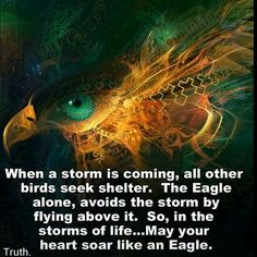 Bonnie...life surely has been stormy the last few years. But with God's grace, you have soared above the storms as eagles fly above the storms. Hold fast to faith that all will be calmer soon.