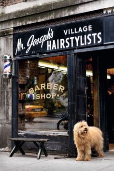 Mr. Joseph's Village Hairstylists - New York City, New York