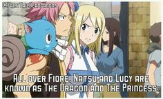 All over Fiore, Natsu and Lucy are known as The Dragon and the Princess Fairy Tale Anime, Fairy Tail Family, Fairy Tail Natsu And Lucy, Fairy Tail Nalu, Fairy Tail Couples, Fairy Tail Ships, Fairy Tales, Me Anime, I Love Anime