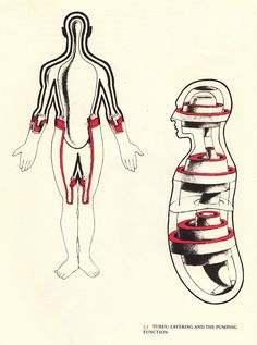 Emotional Anatomy: Stunning Vintage Illustrations of Somatic Consciousness – Brain Pickings Anatomy Body Parts, Alexander Technique, Gross Anatomy, Gifts For Photographers, Keep It Real, Anatomy Art, Qigong, Simple Bags, Science Art
